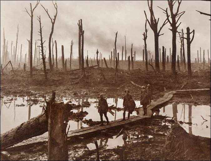 The Shell-Shattered Area of Chateau Wood, Flanders (Picture by Frank Hurley, 1917)